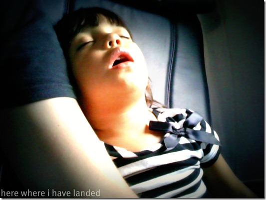 SleepingOnThePlane