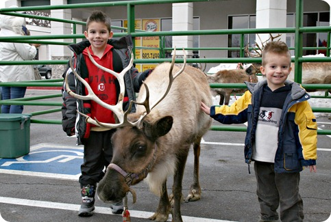 Boys with Reindeer