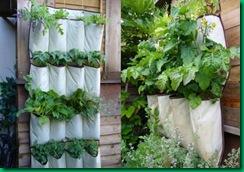 planters1-550x385