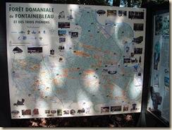 panneaux forêt (1) (1024x768)