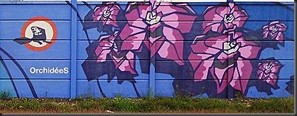 3  Grafitis