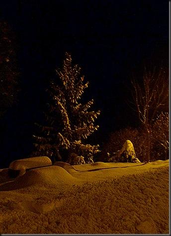 Neiges du soir 007