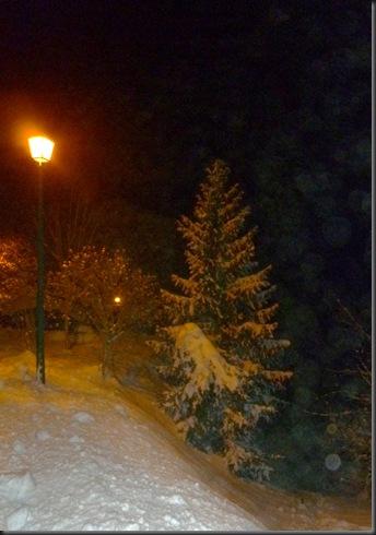 Neiges du soir 010