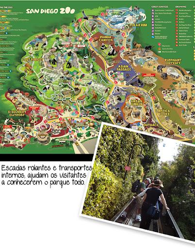 sandiegozoo3 - Passeios - San Diego Zoo