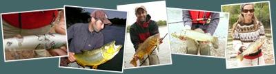 Ver pesca en rio juramento
