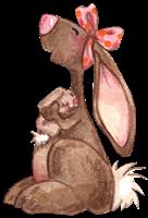 ratones conejos misimagenesdivertidas.blogspot (8)