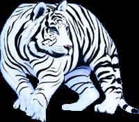 tigres misimagenesdivertidas.blogspot (5)