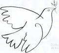 palomas paz (15)