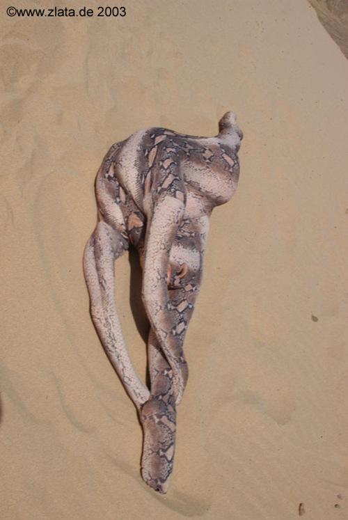 Una mujer se dobla hasta parecer una serpiente