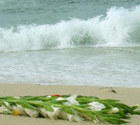 coluna zero, meio ambiente, consumo consciente, poluição dos oceanos, oferenda, comportamento