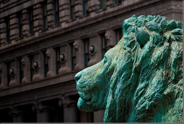 lion Art Ins
