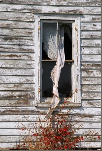house window 1
