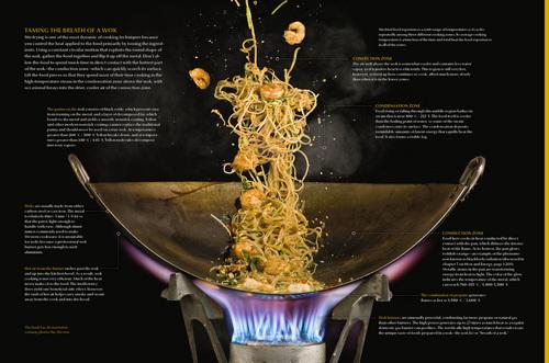 Wok from Modernist Cuisine