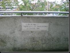 DSCN5536