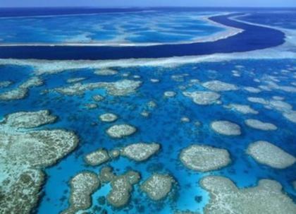 Barreira de Coral Australia