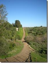 Peterscanyon trail