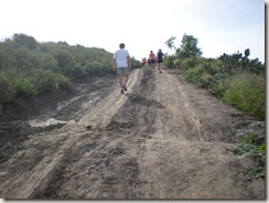 OC Trail Run hill