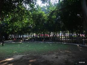 DSCF4584.jpg