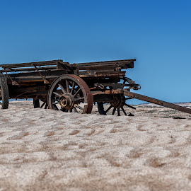 Ox-Wagon Deserted by Johan Jooste Snr - Transportation Other ( broken, namib desert, transport, ox-wagon, historic, namibia, abandoned )