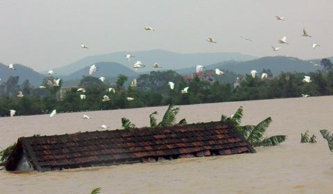 Văn thư v/v cứu trợ bảo lụt