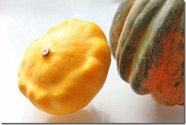 101126_patty_pan_squash_and_acorn
