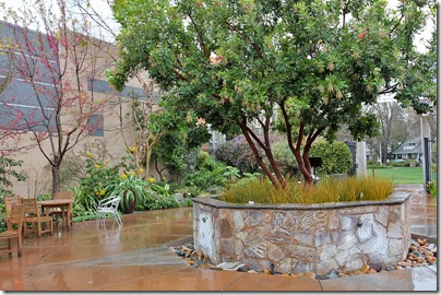 110306_ArboretumTerrace_overall