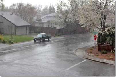 110320_rain_front_yard