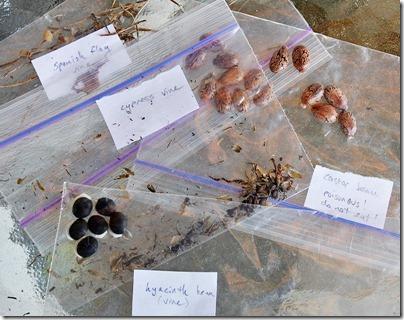110421_trade_seeds