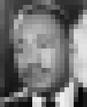 Optical0007D