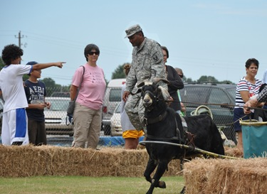 Secutiry_goatraces_2010