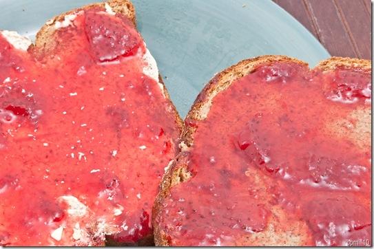 almond butter toast-1