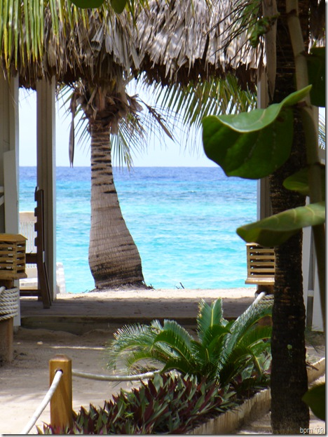 The Paradise Beach Villas view of the ocean