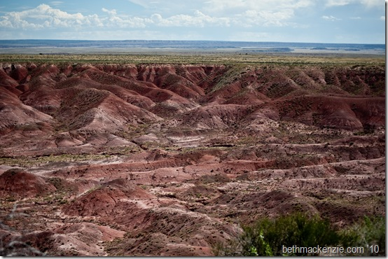 Petrified Forest-010