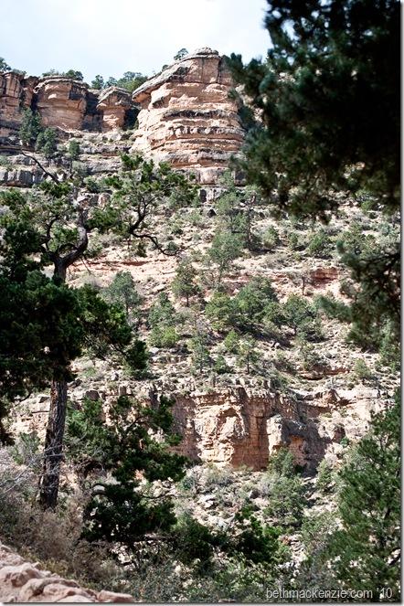 Grand Canyon-034
