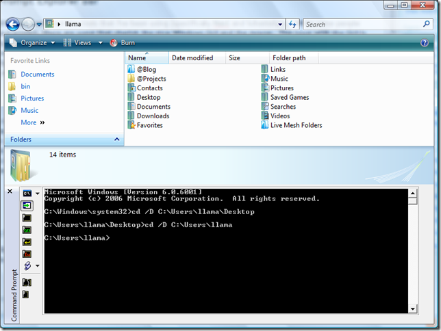 Command Prompt Explorer Bar Screen Shot on Windows Vista