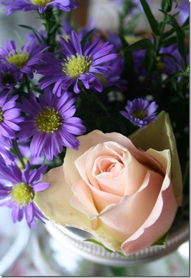 blomster 005