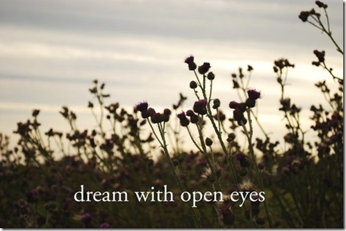 dream-with-open-eyes_55688880_large