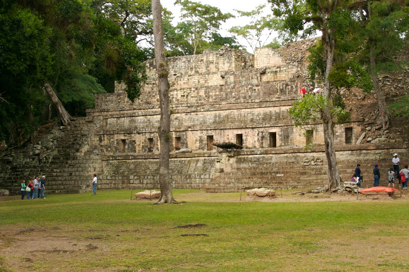 copan ruins through trees