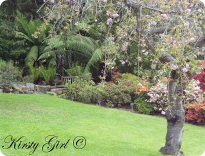 Picture 057gardens3