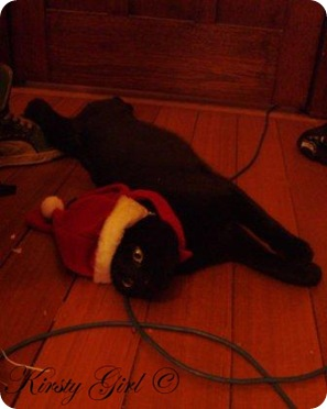 Christmas Cat #2