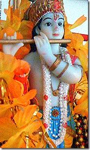 Lord Krishna is Hrishikesha