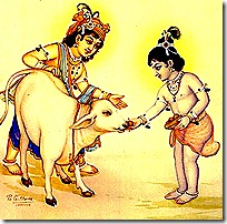Krishna and Balarama in Vrindavana
