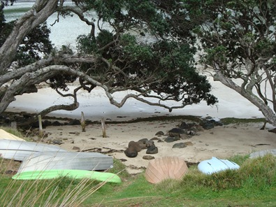 Schooner Beach