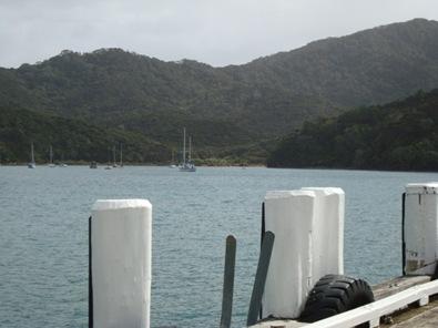 Yachts sheltering. Taken from Whangaparapara wharf