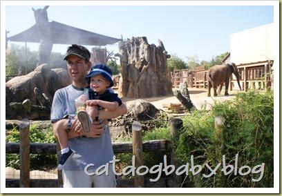 2010-09-29 k'ville zoo (4)