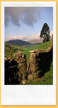 yorkshire-landscape-11.2
