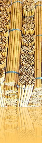 tonkin_bamboo_poles