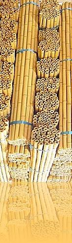 tonkin_bamboo_poles