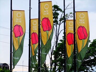 DSCF2457_TF_banners[1]