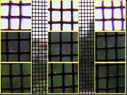 DSCF0226_screen_crops[1]